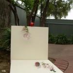 Installazione nel giardino immaginario in Australia - 2013