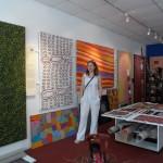 Visita in una Gallery di Darwin - 2013